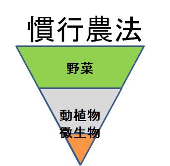 ピラミッド慣行