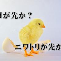 ニワトリ卵