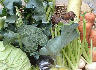 セット野菜