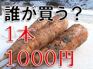 ニンジン1本1000円